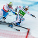 Ski Cross World Cup H2015