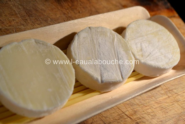 Salade aux Ravioli & Cabécou Gratiné © Ana Luthi Tous droits réservés 01 Gratiné © Ana Luthi Tous droits réservés 08