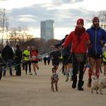 eDreams Mitja Marató de Barcelona 2015 Fotografía : Alexandre Vandystadt
