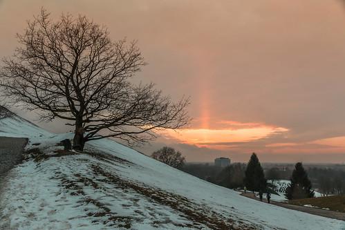 sunset tree munich münchen landscape sonnenuntergang landschaft baum olympiapark olympiaberg canoneos70d