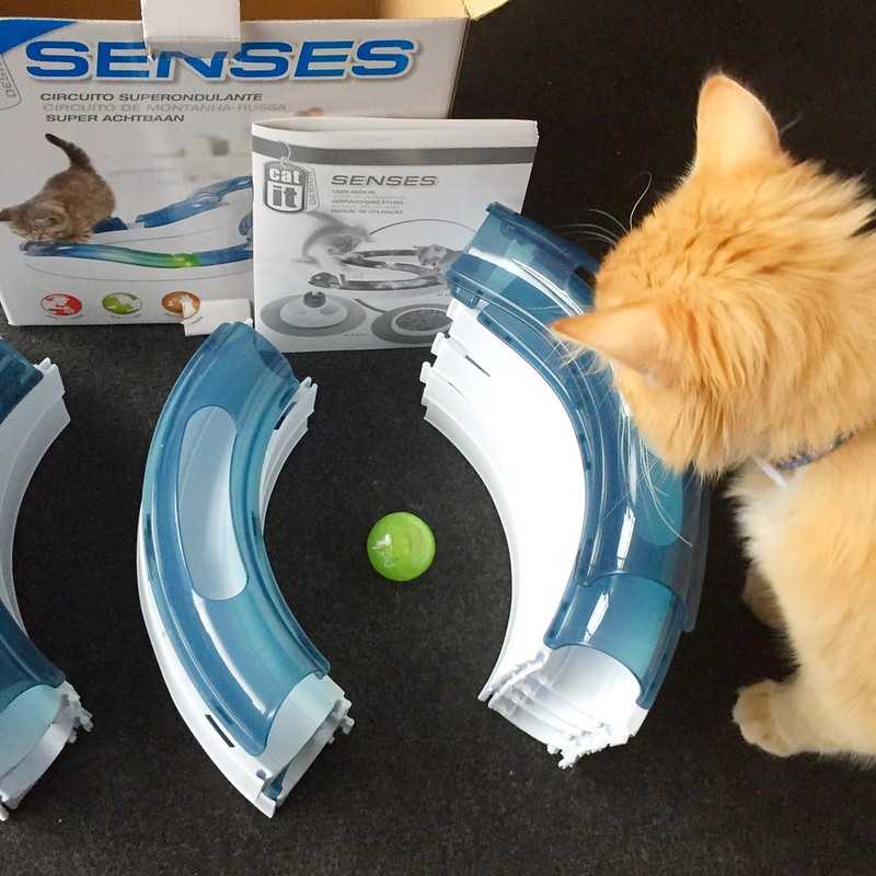 How to unbox and build CatIt Design Senses Super Roller Circuit with Human