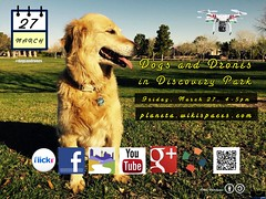 March 27: Dogs and Drones in Discovery Park (Attribution-Share Alike license) Penny