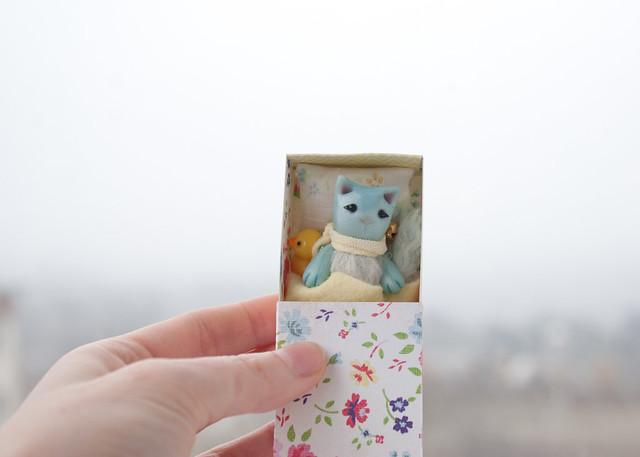 blue cat 2
