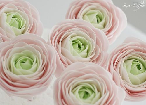 Sugar Flowers- ranunculus