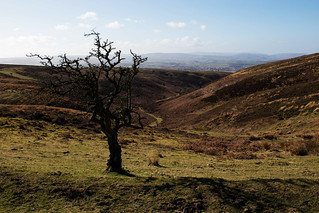 The Top Of The Combe