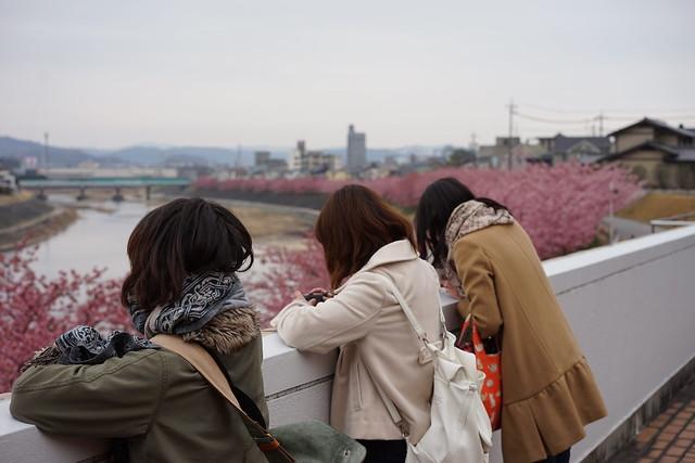 Okazaki_Sakura_11