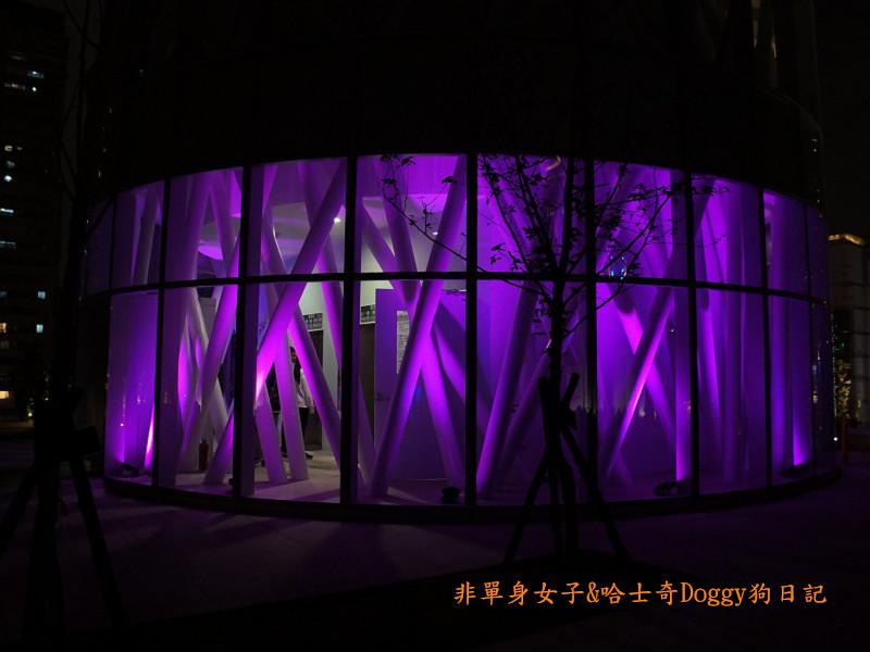 高雄市立圖書館&夢時代廣場摩天輪30