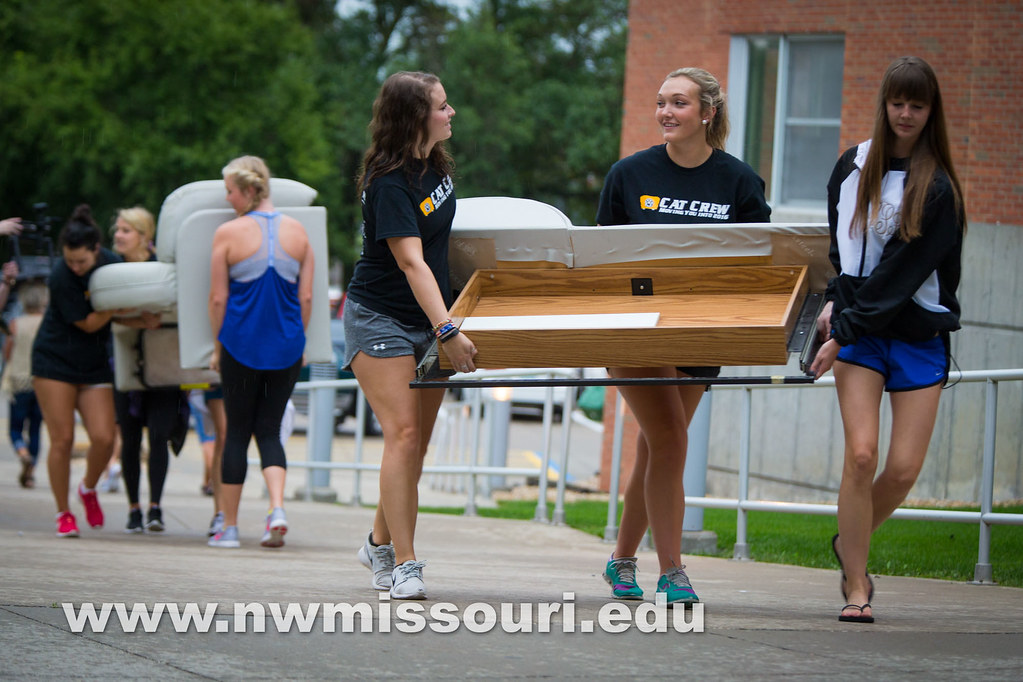 move in day fall2016 tw 06703