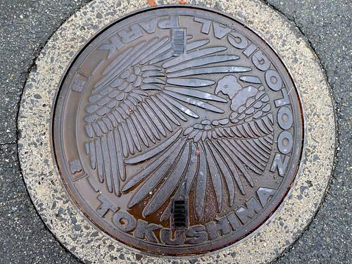 Tokushima Zoological Park manhole cover (とくしま動物園のマンホール)