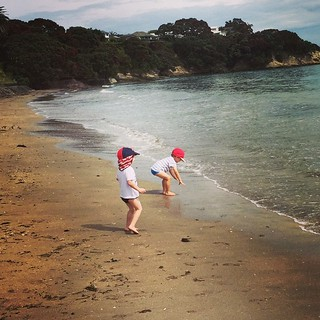 Изображение на Narrow Neck Beach. square squareformat mayfair iphoneography instagramapp uploaded:by=instagram foursquare:venue=4b88474bf964a52031ec31e3