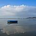 Small photo of Adrift