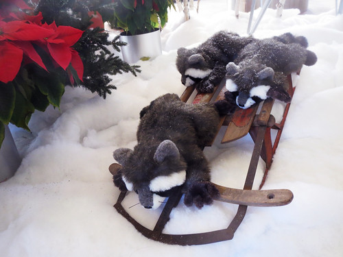 Raccoons on a Sled Christmas Decorations