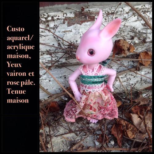 [ minipin et cojoo hujoo] Carpette et machine 16386779177_210b1a46da