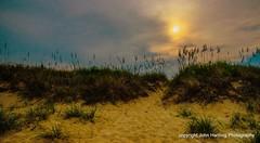 Dunes at Duck