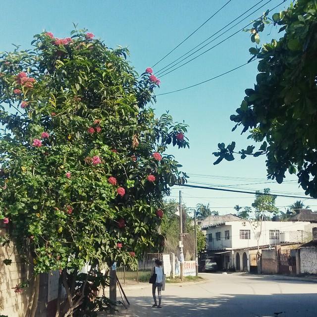 aamu, Sayulita, Mexico
