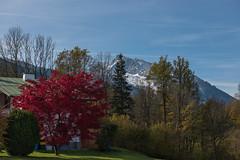 Autumn 2014. Alps