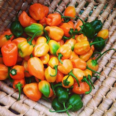 recipe: how many habaneros in a pound [11]