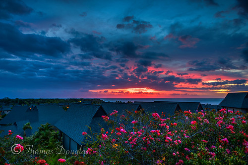 flowers sunset fiji clouds hotel holidays vivid colourful