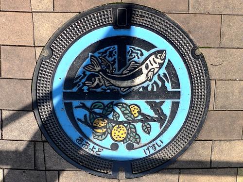 Oyodo Nara, manhole cover (奈良県大淀町のマンホール)