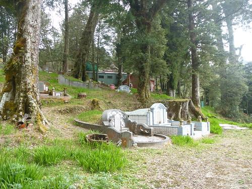 Ta-Alishan-Parc-Marche (140)