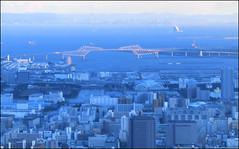 530x330 Tokyo Skytree
