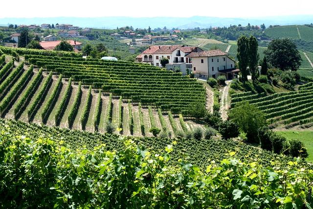 10 Best Wine Travel Destinations of 2015