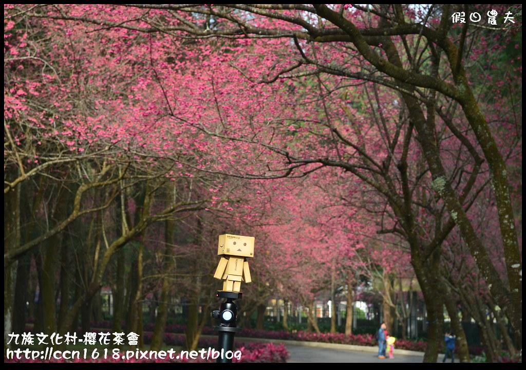 九族文化村-櫻花茶會DSC_4198