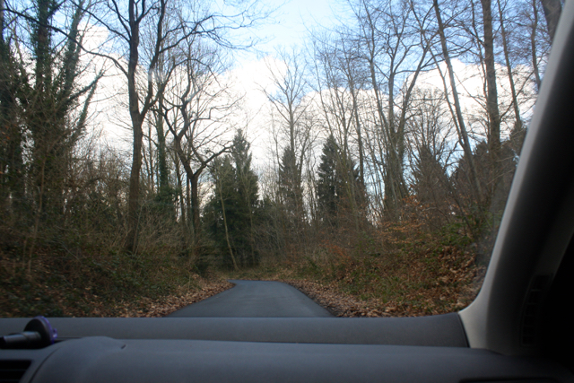 A drive through the forest to finish off our lovely weekend in Bonn, Germany