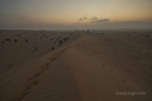 【写真】世界一周 : ドバイ・砂漠(2日目)