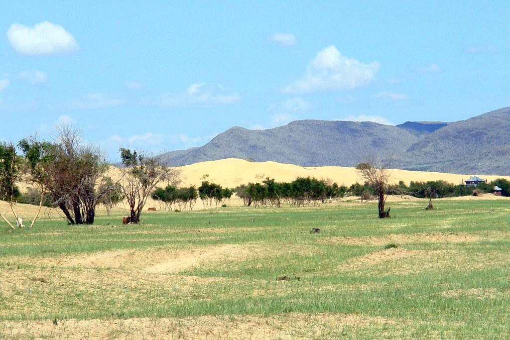 Y de repente la estepa mongola se transforma de un inmenso desierto