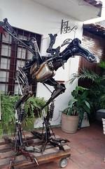 Albatrossauro