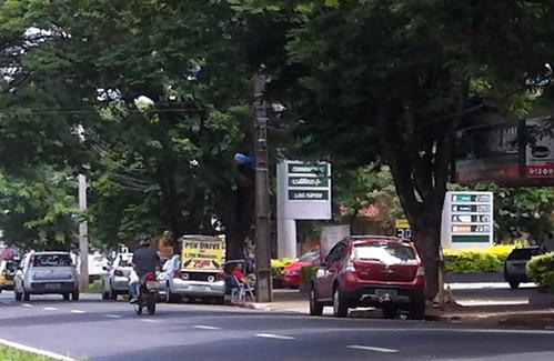 Avenida Mandacaru