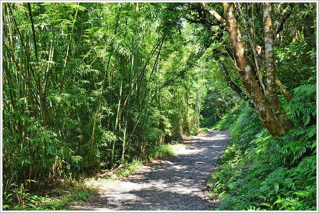 聖母山莊聖母登山步道宜蘭礁溪003-DSC_6601