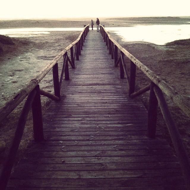 Camino a la playa #beach #playa