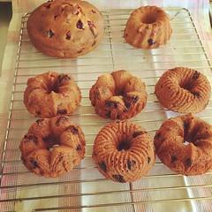produce(0.0), baking(1.0), baked goods(1.0), food(1.0), dessert(1.0), snack food(1.0), bagel(1.0),