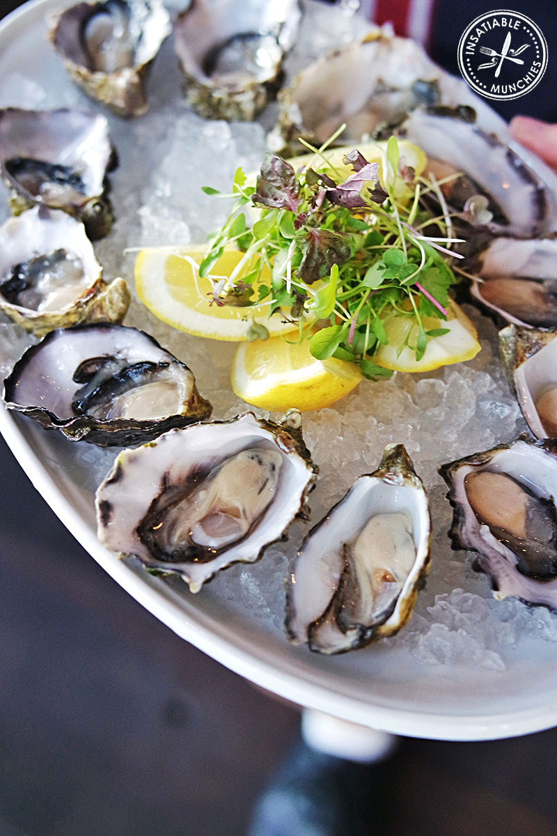 New Zealand Oysters