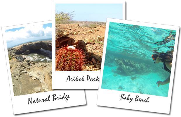 Roteiro de Aruba Dia 5