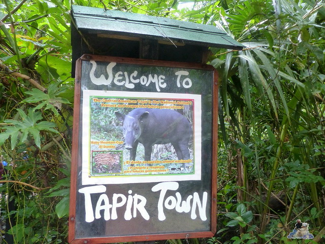 Belize Zoo 19.11.2014 33