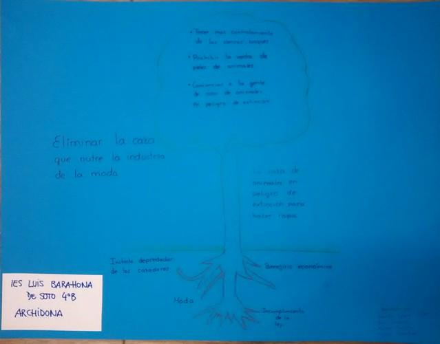 IES LUIS BARAHONA DE SOTO (4)