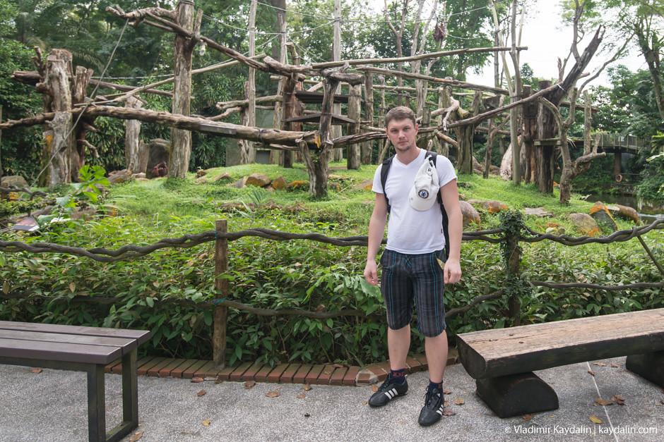 Владимир Кайдалин, зоопарк Сингапура