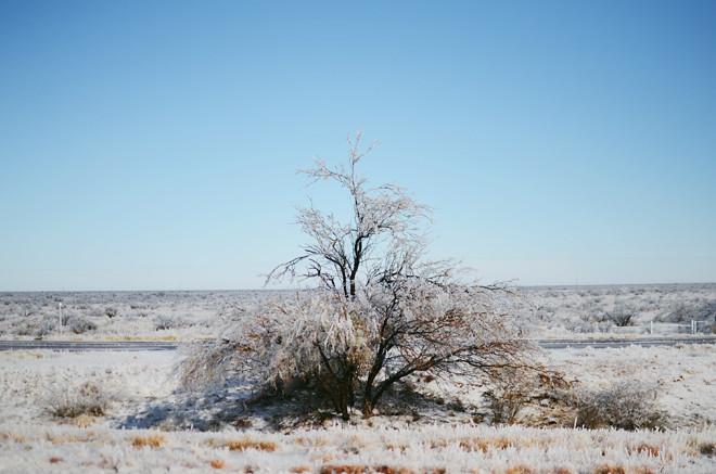 winter storm frona