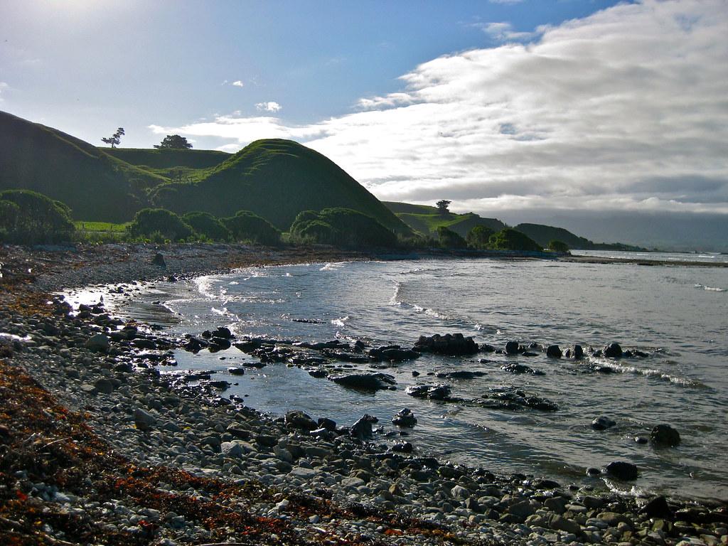 Coastline in Kaikoura, New Zealand