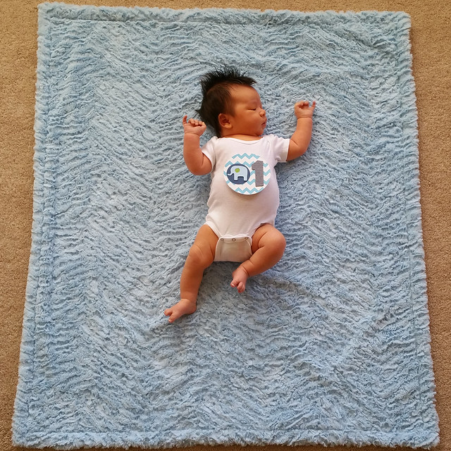 Parker's One Month Photo | shirley shirley bo birley Blog