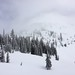 Small photo of Rogers Pass