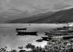 Wonderful Fewa Lake in BW