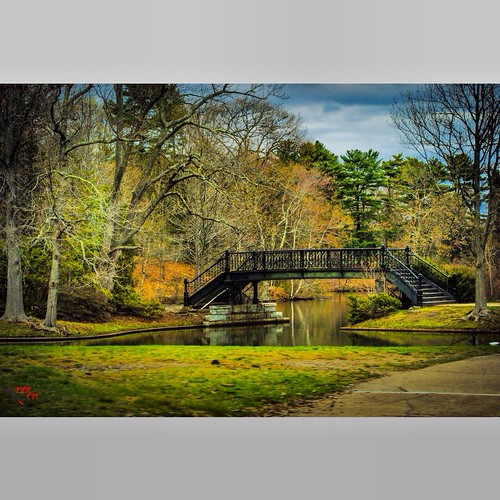 Roger Williams Park. Providence, RI #rhodeisland #landscape #outdoors #streetphotography #photography #providence via I {heart} Rhody