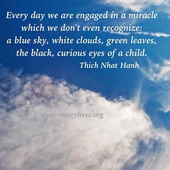 Every day we are engaged in a miracle which we don't even recognize: a blue sky, white clouds, green leaves, the black, curious eyes of a child. Thich Nhat Hanh  #ThichNhatHanh #miracle #child #sky #EveryDayMiracle #mercylives
