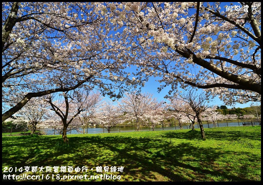 2014京都大阪賞櫻自由行.鶴見綠地DSC_1212