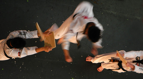 Chinese New Year Karate Action