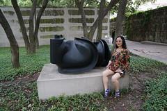 Dallas Museum of Art (48)